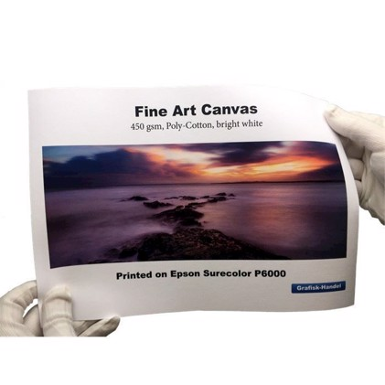 Fine Art Canvas